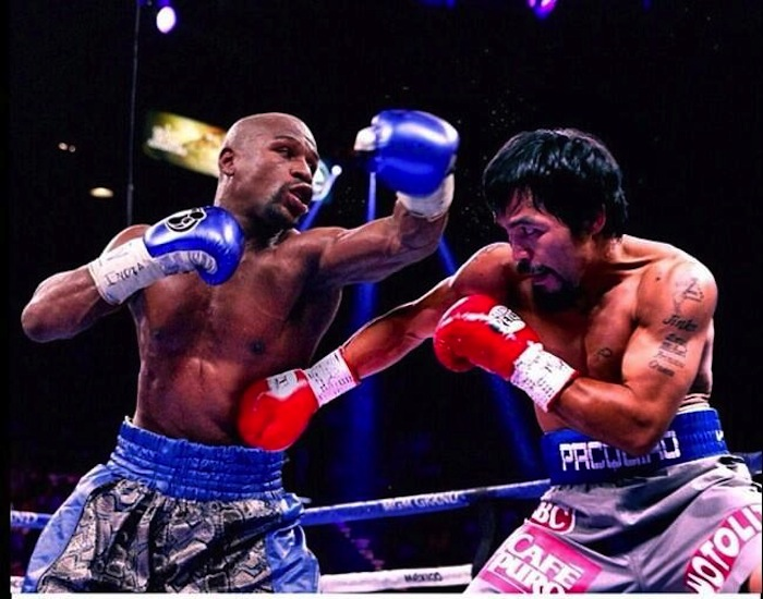 maypac for newbiesthe fight city