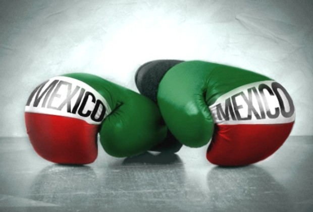 mexican boxing gloves