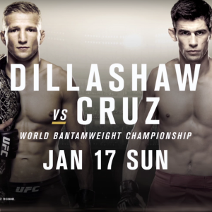 UFC-Fight-Night-81-betting-picks-UFC-Fight-Night-81-Dillashaw-vs-Cruz-betting-tips-UFC-Fight-Night-Boston-betting-advice-odds-guide