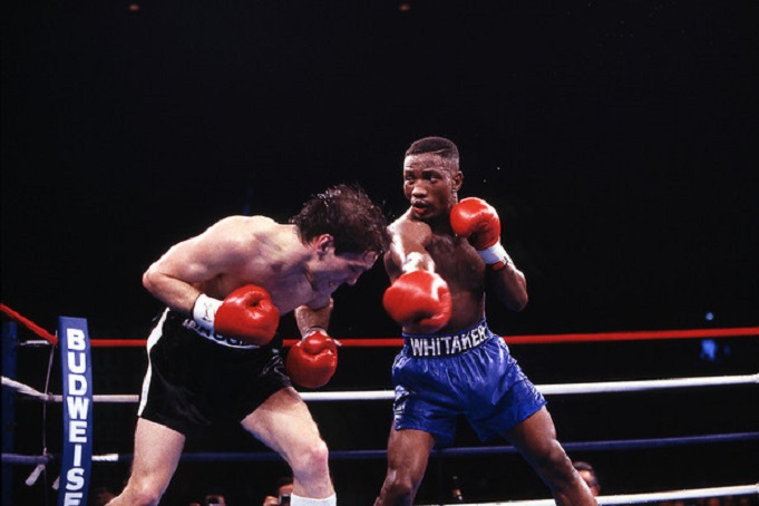 Feb. 18, 1989: Whitaker vs Haugen